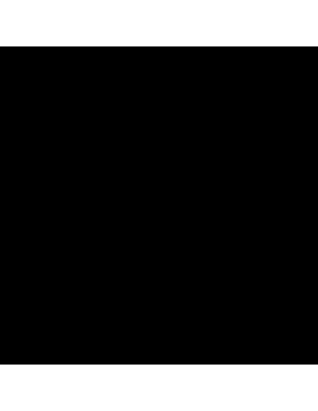 Profoto  B10   901163