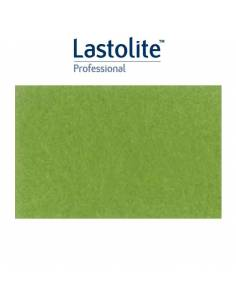 LASTOLITE Fondo de papel Leaf verde claro 2,75 x 11 mts. LP9046