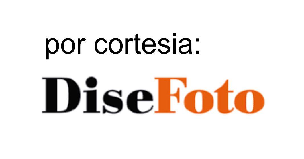 Disefoto